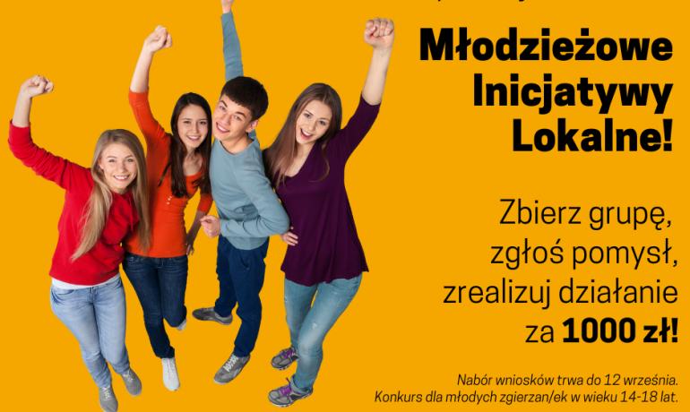 Młodzieżowe Inicjatywy Lokalne - zgłoś swój pomysł